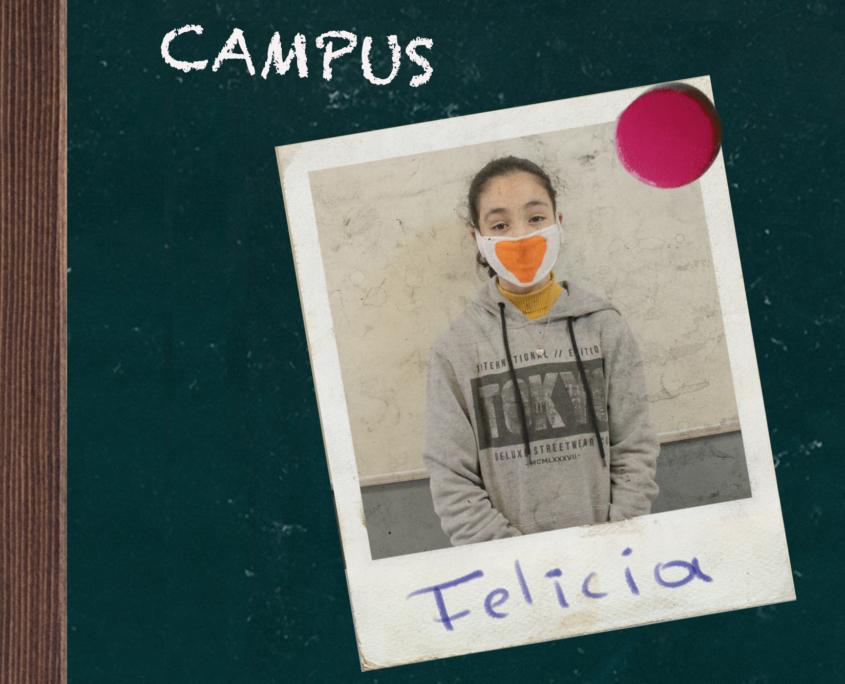 Felicia rectangle